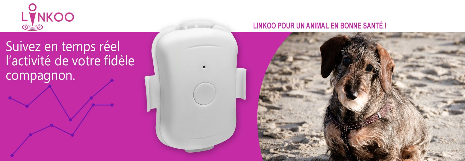 Linkoo Pets balise tracker GPS pour animaux