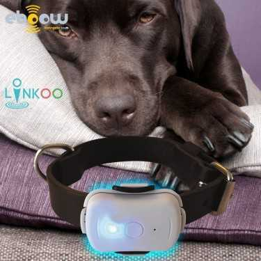Tracker Linkoo Pet Balise GPS pour animaux